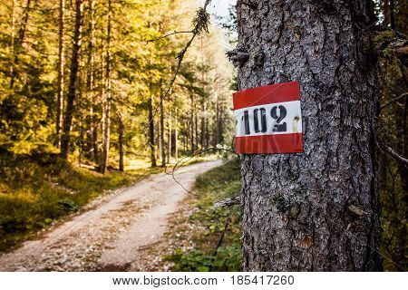 Trekking Route Marker In The Alps.