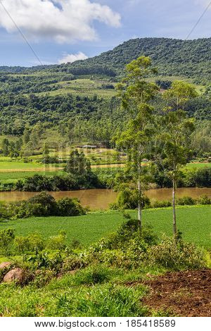 Soy Plantation And River