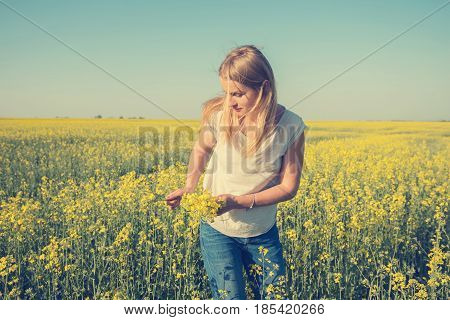 Young Woman Collects Yellow Flowers