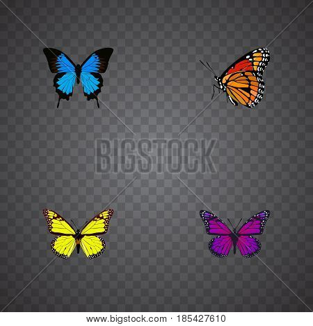 Realistic Common Blue, Milkweed, Purple Monarch And Other Vector Elements. Set Of Butterfly Realistic Symbols Also Includes Violet, Purple, Yellow Objects.