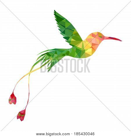 vector polygonal hummingbird silhouette, color triangulation of songbird, isolated vector element