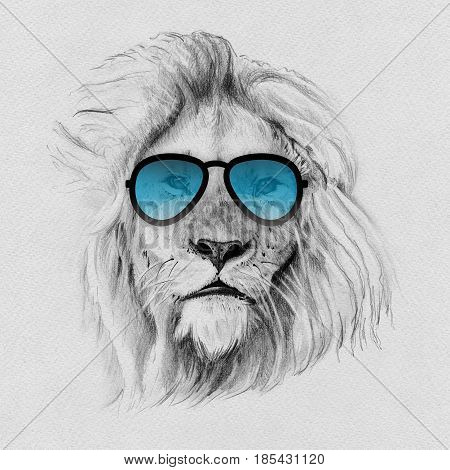 Portrait of lion drawn by hand in pencil in sunglasses. Originals no tracing