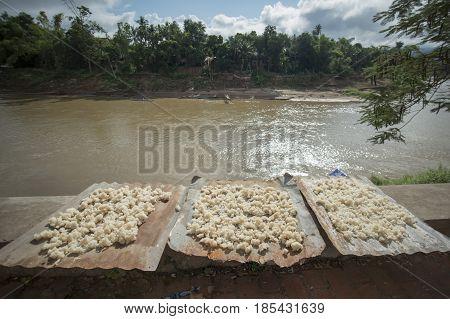 Laos Luang Prabang Nam Khan River Food Rice