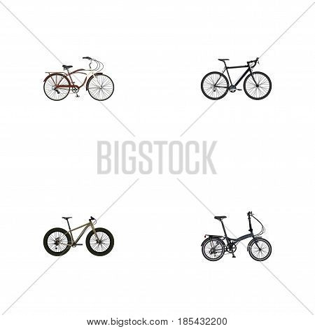Realistic Folding Sport-Cycle, Journey Bike, Bmx And Other Vector Elements. Set Of Lifestyle Realistic Symbols Also Includes Bmx, Cyclocross, Folding Objects.