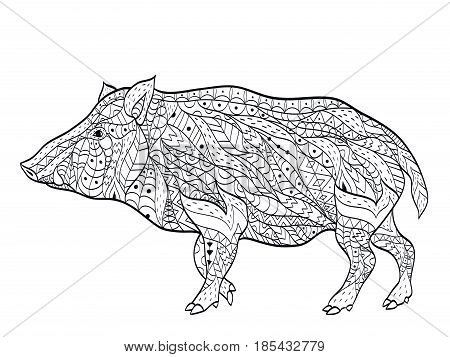 wild boar coloring book vector illustration. Anti-stress coloring for adult animal. Zentangle style. Black and white lines. Lace pattern