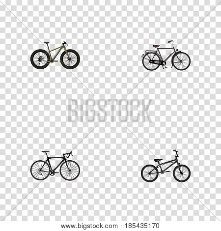Realistic Training Vehicle, Bmx, Exercise Riding And Other Vector Elements. Set Of Bike Realistic Symbols Also Includes Bmx, Road, Extreme Objects.