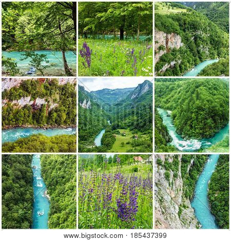 collage - green hills and mountain river landscapes, Montenegro.