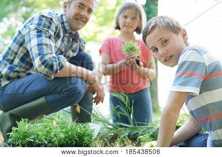 Kids helping daddy with gardening
