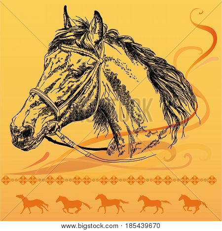 Orange background with big hand drawing horse head with bridle in black and orange galloping horses silhouettes vector illustration