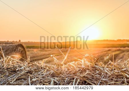 Straw bale close-up in light of the low evening sun backlight on horizon. Dry hay background on the sunset.