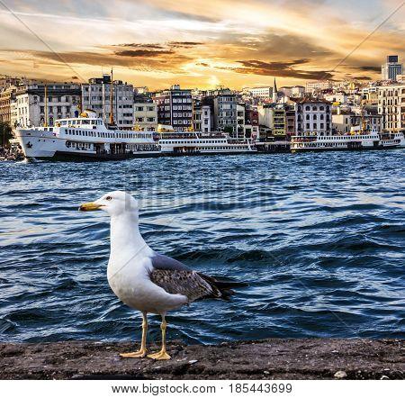 Istanbul sunset view. Seafront of Bosporus, Turkey