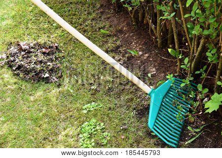 Gardener raking fall leaves in garden. prepared for gardening. Nature background