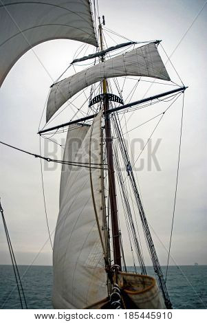 Sailing boat on Northern Sea sails wind water