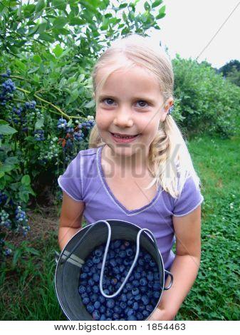 Blueberry Pail