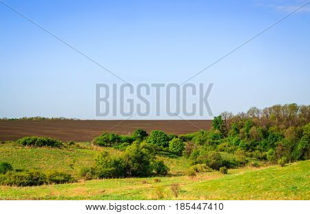 Nature of ukraine beautiful view beyond the city a field with fertile land trees with green leaves bright and light under the blue sky