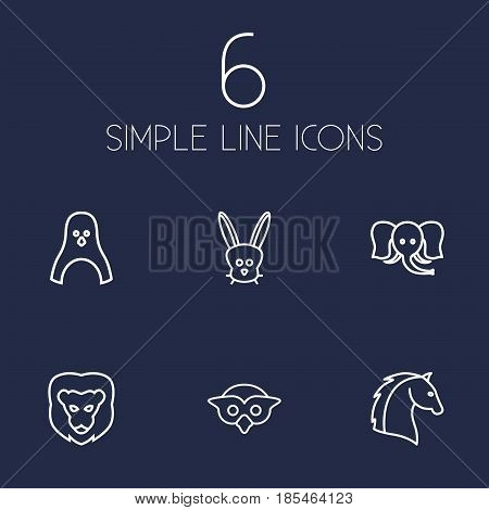 Set Of 6 Brute Outline Icons Set.Collection Of Lion, Penguin, Rabbit And Other Elements.