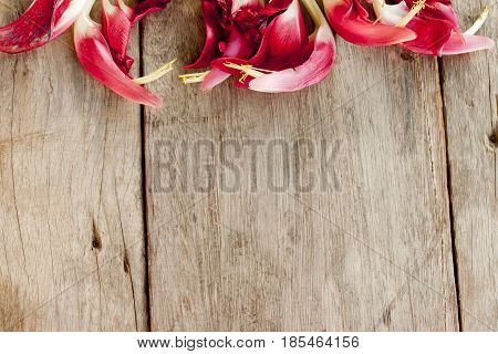 Sesbania flower Put on wooden floor for use concept on empty space.