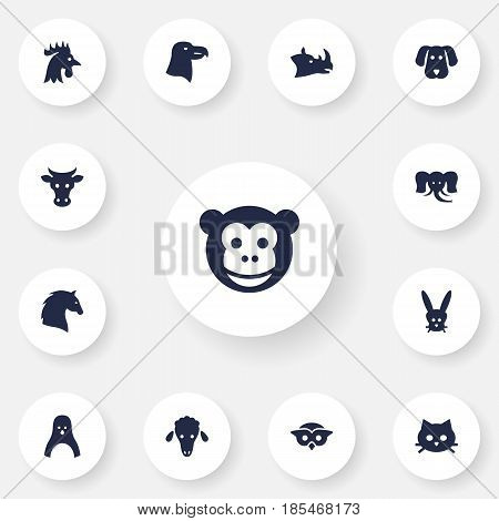 Set Of 13 Brute Icons Set.Collection Of Hound, Night Fowl, Aquila And Other Elements.