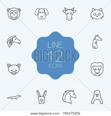 Set Of 12 Alive Outline Icons Set.Collection Of Lizard, Horse, Cow And Other Elements.