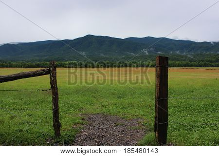 A cloudy day on a fenced in field in front of forested mountains.