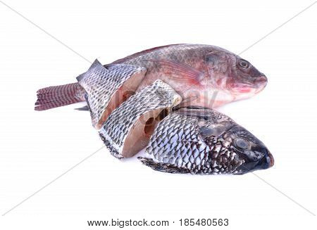 whole and portion cut fresh Nile Tilapia fish on white background