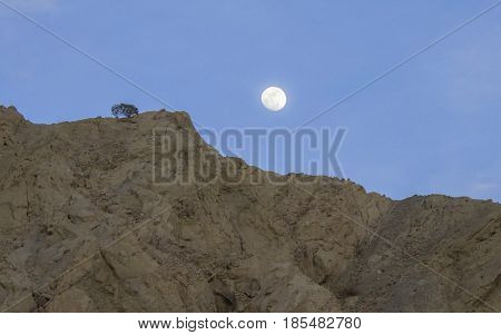 Moonrise over a rocky ridge with one lone tree