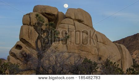Moonrise over a rock pile in Joshua Tree National Park