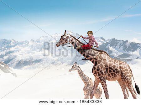 Kid ride giraffe