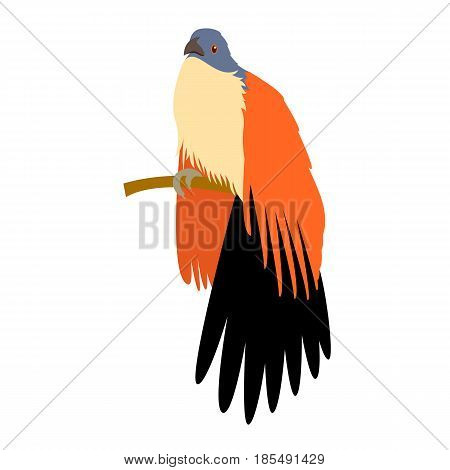 cuokoo bird  vector illustration style Flat side