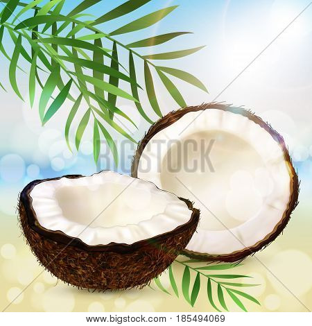 Realistic coconut two halves of coco and palm leaves on a sunny summer beach background. Vector.