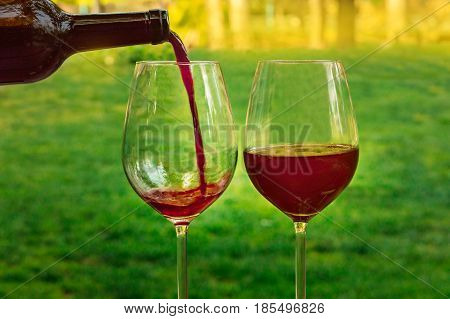 Red wine poured from a bottle into a glass at a picnic, with green grass and trees in the blurred background, on a sunny day