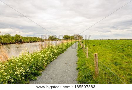 Picturesque rural landscape on a cloudy day in the spring season in the Netherlands. A seemingly endless bicycle path is between a creek and an embankment.