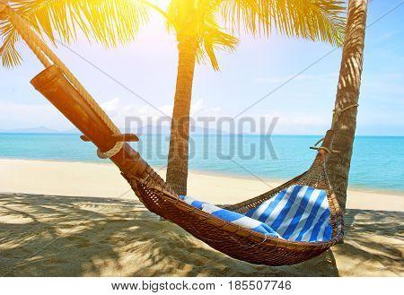 Empty hammock between palms trees on the beach