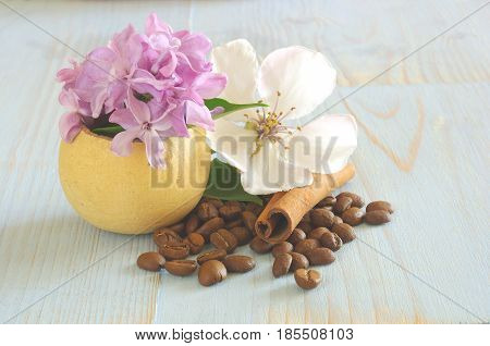 Coffee beans cinnamon with Purple Lilac white blossom flower still life background template. Vintage wooden table coffee flavor decoration.