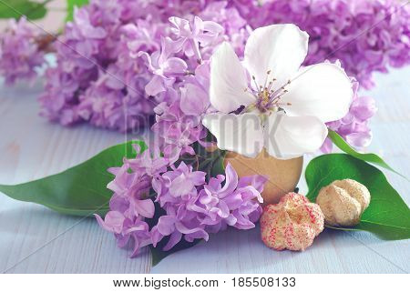 Fresh flower close-up horizontal still life background. Spring purple lilac and white blossom. Blooming closeup romance decoration template.