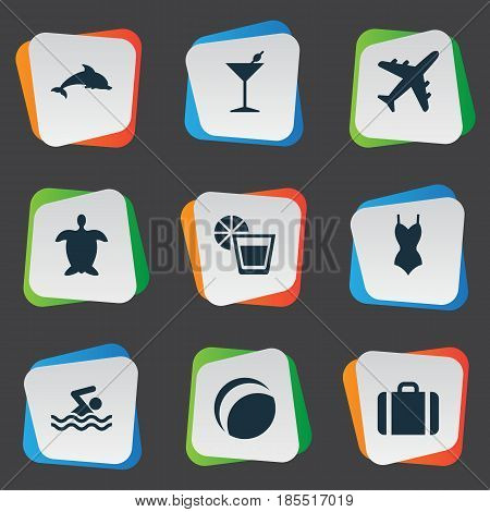 Vector Illustration Set Of Simple Seaside Icons. Elements Tortoise, Swimming Man, Airplane And Other Synonyms Pool, Bikini And Mammalian.