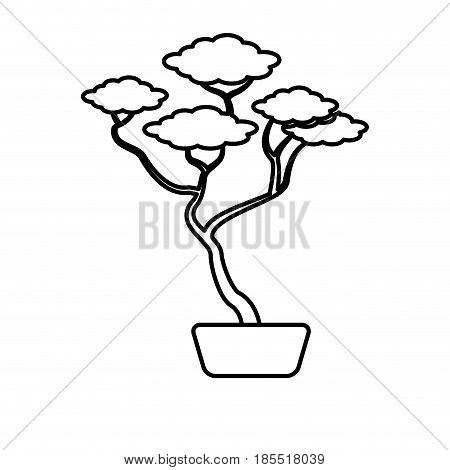 bonsai tree ceramic pot botanical line vector illustration