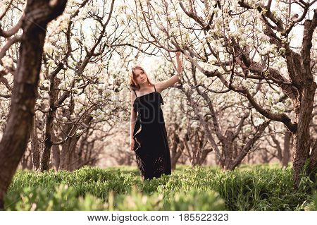 Pretty teen girl 14-16 year old walking in pear orchard wearing black dress. Summer time.