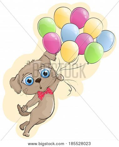 Cute puppy flying in a balloon. Puppy with big blue eyes