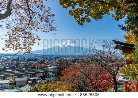 Mountain fuij with maple tree