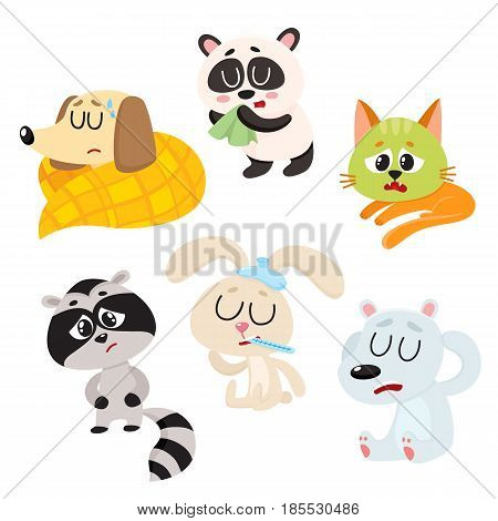 Sick, ill animals and pets - fever, headache, stomach ache, flu, running nose, cartoon vector illustration isolated on a white background. Sick baby animals - panda, dog, cat, rabbit, raccoon, bear