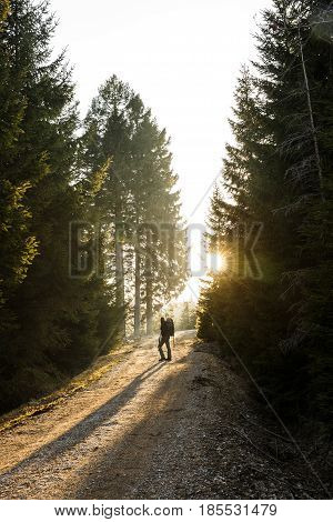 Woman hiker standing on a mountain road sun shining through the trees enjoying solitude. Active lifestyle into the wild and into the light concept.