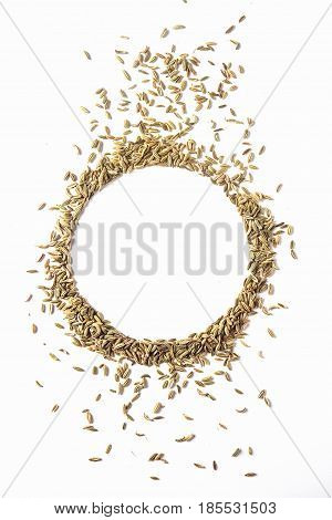 Spices for meat dishes. Whole fennel grains. White background. isolated