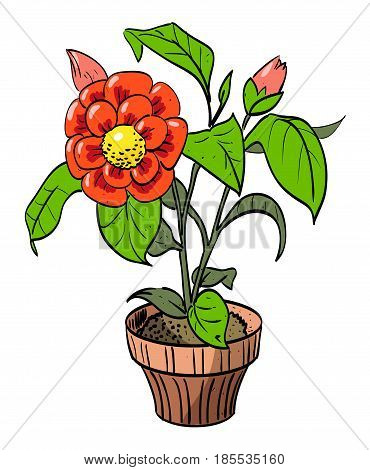 Cartoon image of house plant. An artistic freehand picture.