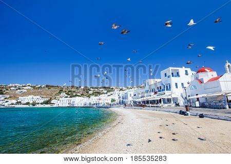 Birds fly over the main town in Mykonos