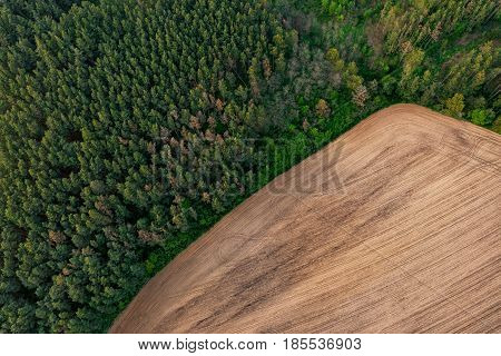 Aerial view of the boundary between a forest and a cultivated field