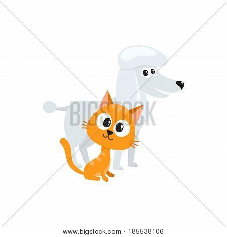 poodle dog dog and red cat, kitten characters, pets, friendship concept, cartoon vector illustration isolated on white background.