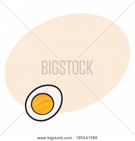 Boiled chicken egg cut in half, sketch style vector illustration with space for text. Hand drawn, sketched illustration, half of hard boiled chicken egg