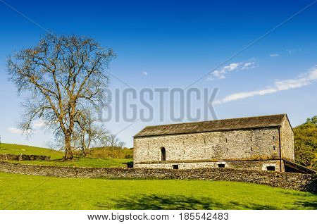 A barn and tree set in English countryside under a blue sky.