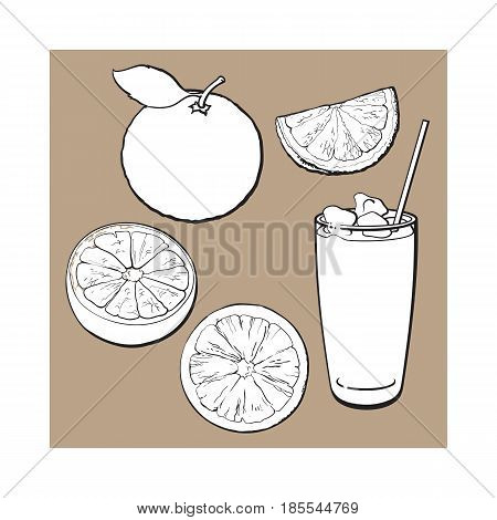 Set of whole, half, quarter grapefruit and glass of fresh juice with ice, black and white sketch style vector illustration on brown background. Hand drawn whole and cut grapefruit and glass of juice